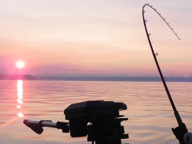 A good King Salmon day off Eglon, WA