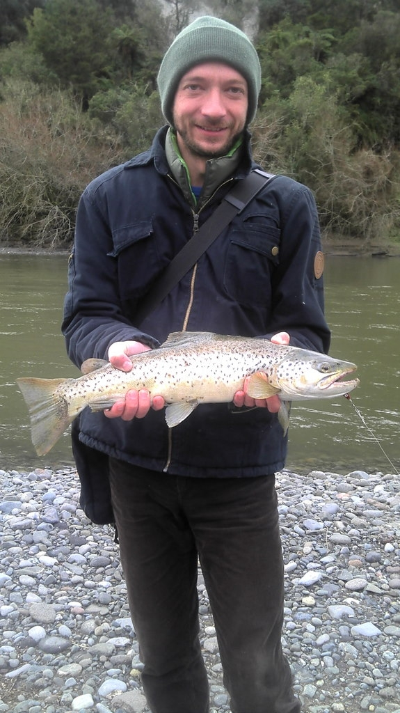 Big brown trout from the whanganui river near Taumarunui, NZ