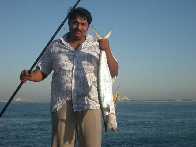 Kingfish UAE