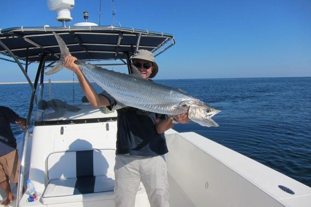 KingFish 18Kgs