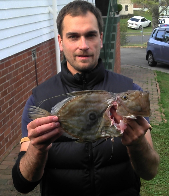 My first John Dory this year.