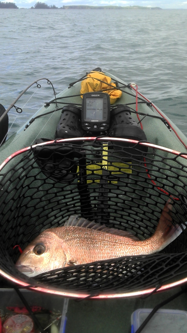 good sized snapper in my kayak