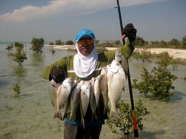 Fishing Mangroves 02 Nov 2012