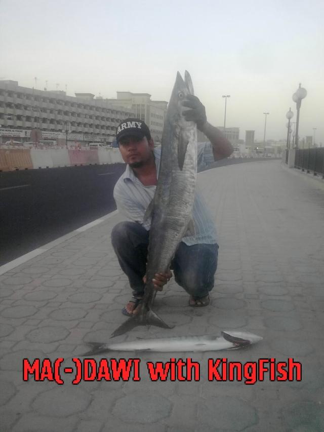 kingfish & small baracuda