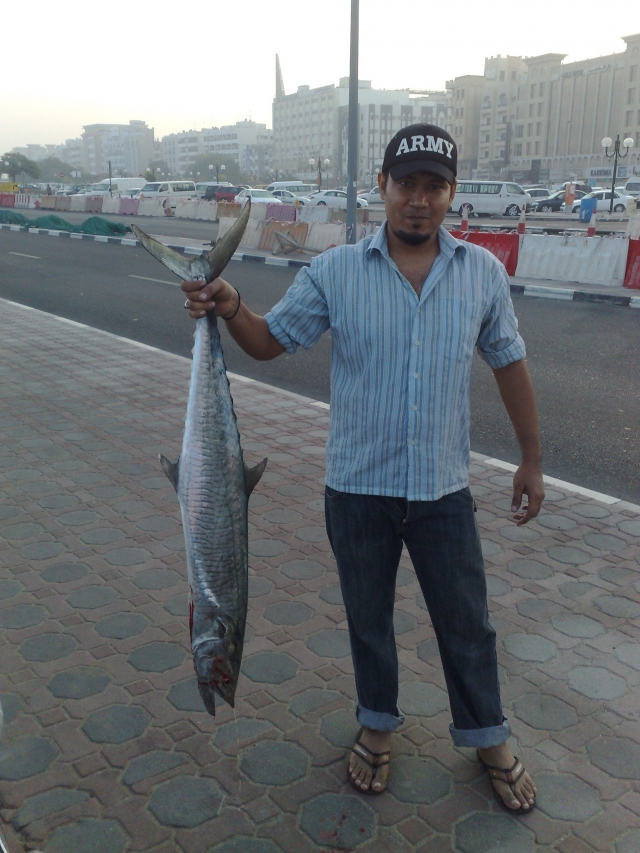 another kingfish