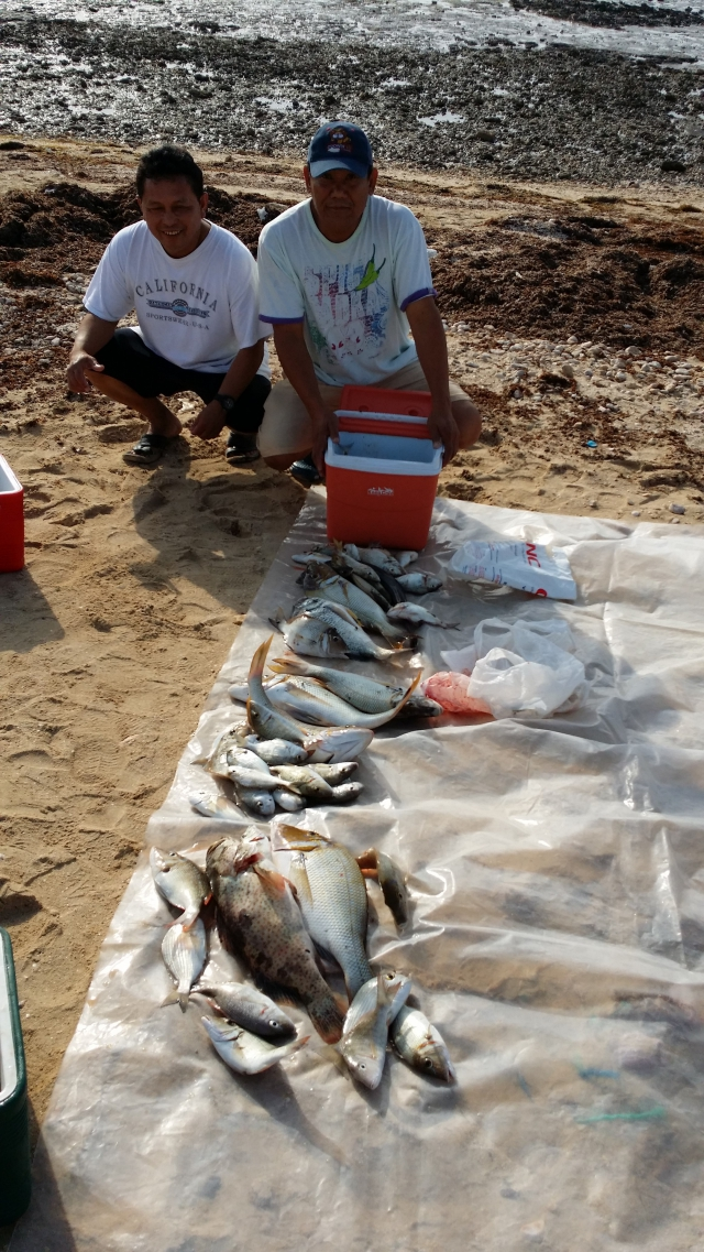 early morning catch in Thakira,Qatar