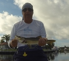 "19"" Snook caught 9/15/2016"