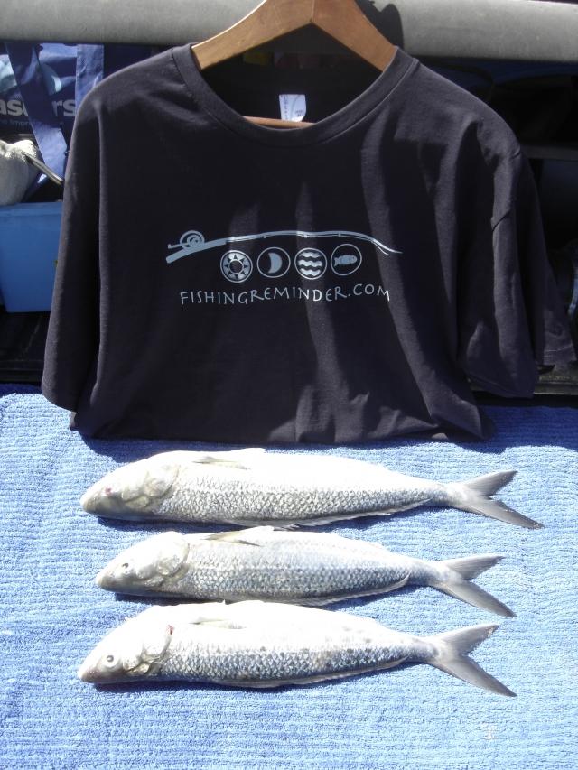 More from Lake Bunga Vic    Fishing Photo