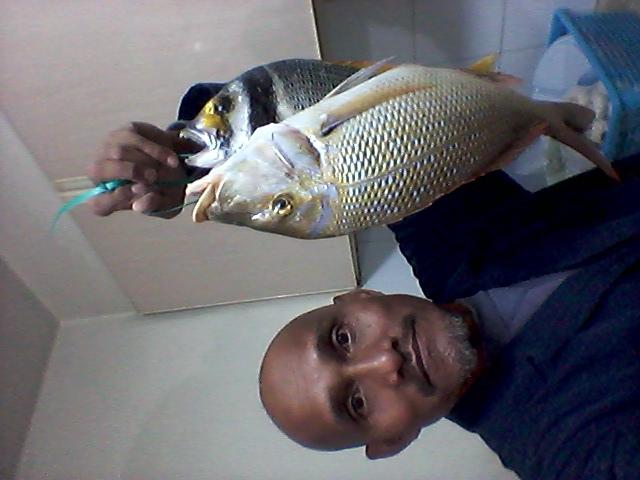 Cherrie Fish