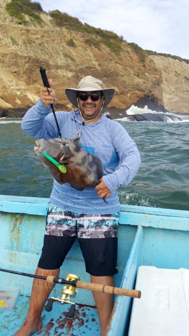 Spearfish or Hog fish