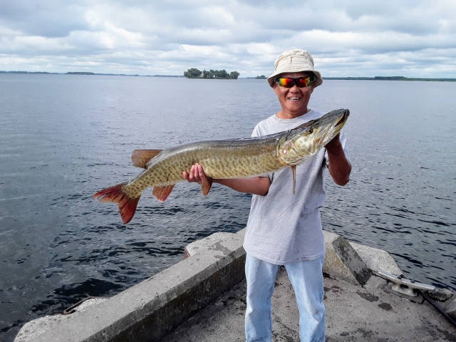 Did not expect that!!! Muskie off a wharf...