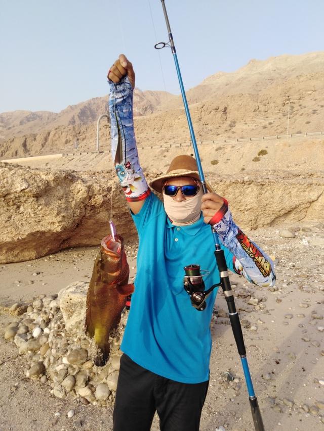 Red Hamoor/grouper