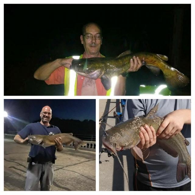 Catfish & Flathead