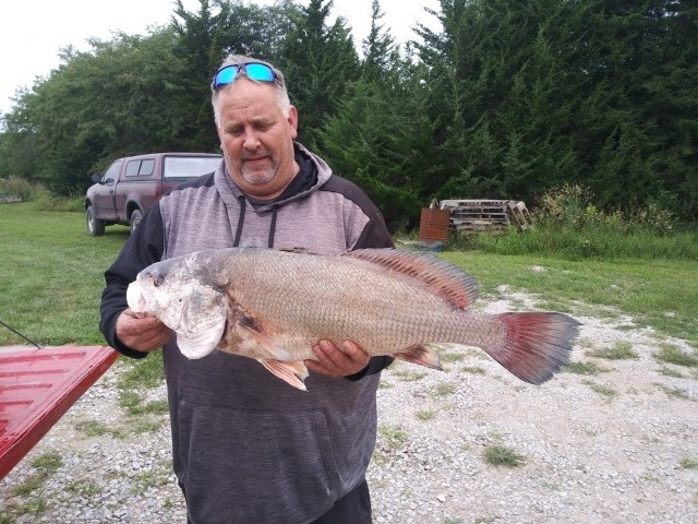 Drum 14lbs 32inches
