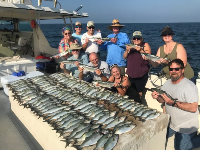 Blues and spanish mackerel.