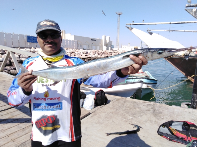Al Ashkharah, Needlefish-1