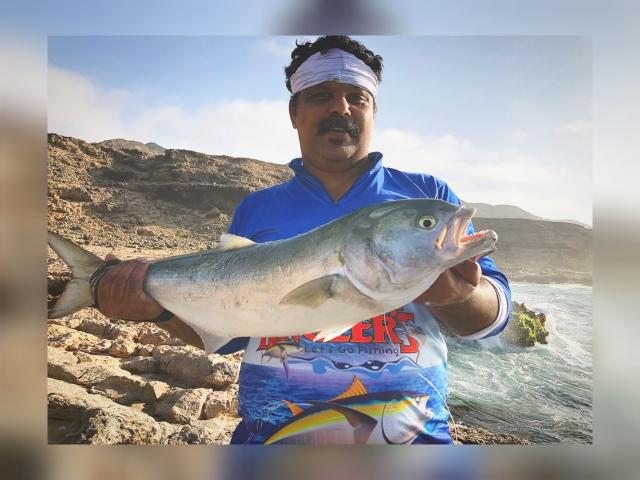 Blue fish, Salmon