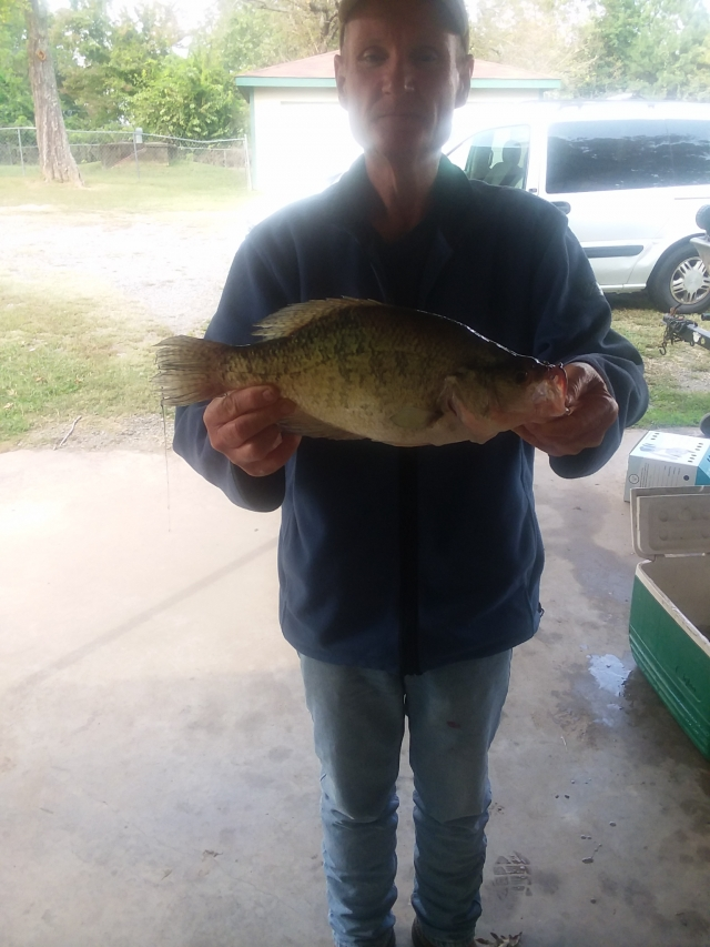 Two and a half pound crappie