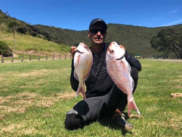 couple nice New Zealand snapper