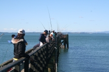Fishing Pier near Auckland