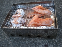Portable Fish Smoker