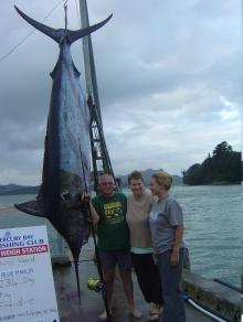 Blue Marlin 234.5kg