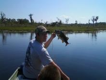 Grasshopper lake