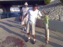 King Fish in Maktoum Bridge, Dubai