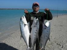 abu dhabi fishing (the queens)