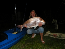 another east cost snapper nz