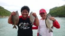 Big Rabbitfish