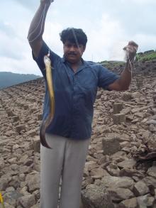 chimony dam fishing kerala