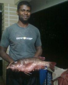fish it!