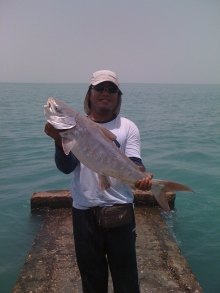 Catfish 3 2011