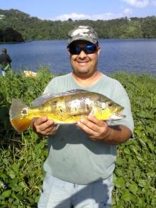 Peacock Bass Puerto Rico 2