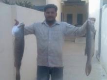 karachi fishing