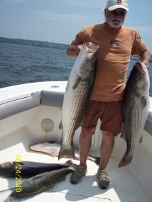 Couple Of Nice Stripers