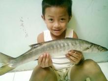 baby barracuda n my baby