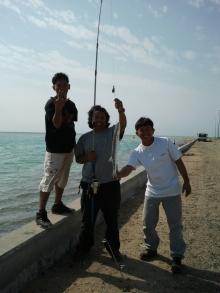 takaw ng barracuda