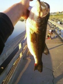 Large Mouth in Nebraska