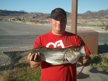 lk mead nv. biggest of the day4.15.12