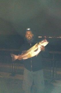 36'' bass