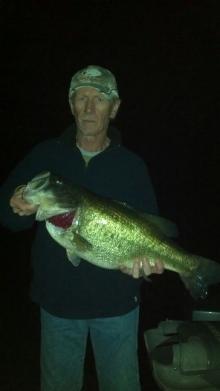 11 lbs 3 ozs Largemouth Bass