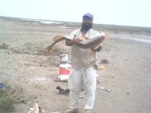 Muhammadani Fishing Point Karachi,Pakistan