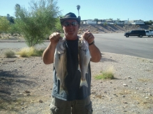 2 nice stripers from lkmead nv.