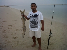 our first barracuda 4 Kg