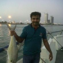 Queen fish at Abu Dhabi Corniche