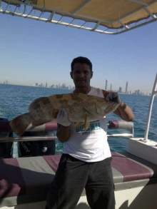 fishing in ab dhabi-hammour