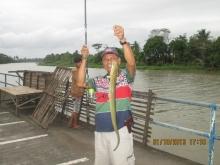 Fresh water Eel in Philippines