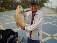 Abu Dhabi Corniche Fishing (Feb. 01, 2013)